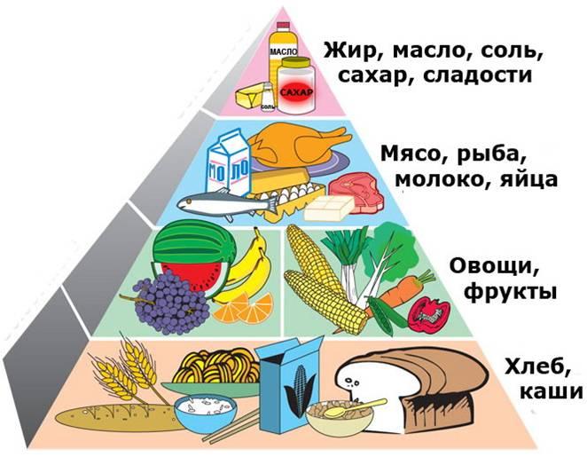 правила здорового питания для школьников кратко